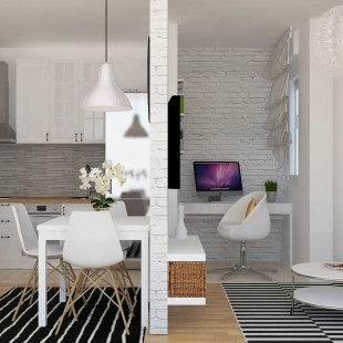 dnevna-soba-trpezarija-i-kuhinja-open-space
