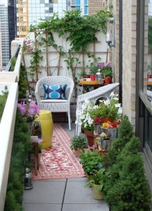 puno zelenila na maloj terasi...