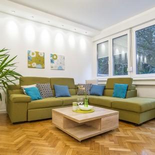 dnevna soba - privatan stan na Lionu - slika 03