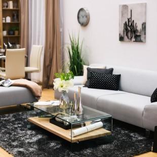 sivo crna kombinacija u dnevnoj sobi