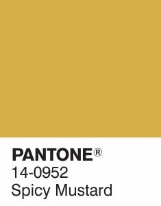 14-0952-spicy-mustard