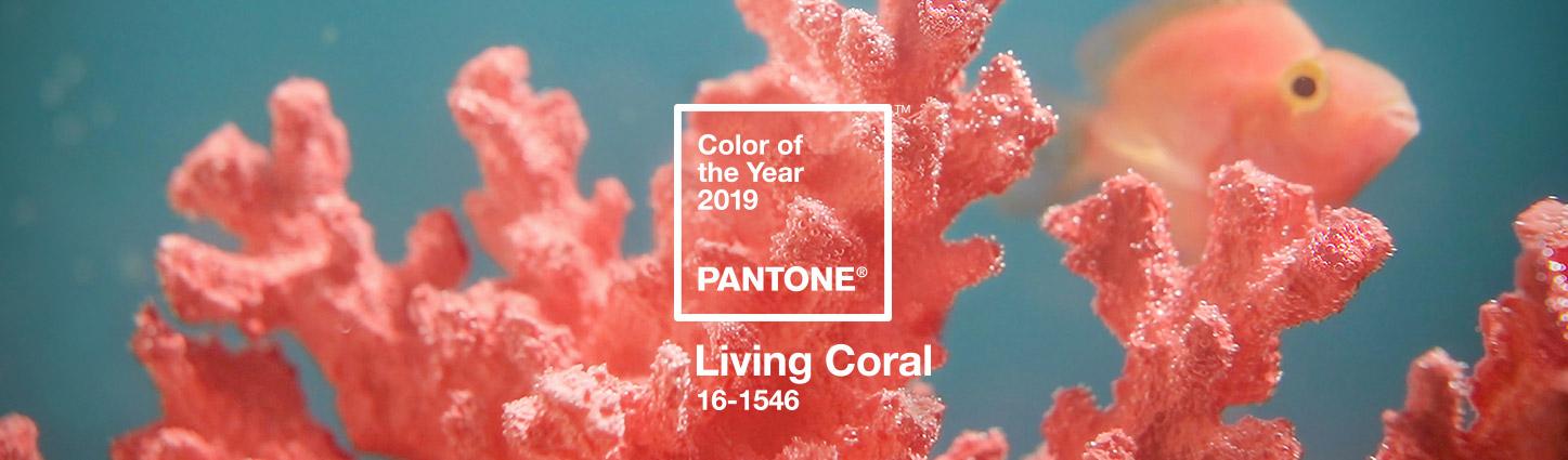 8 Pantone koralno crvena