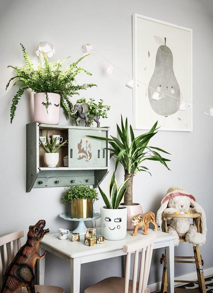 biljke za detoks prostora
