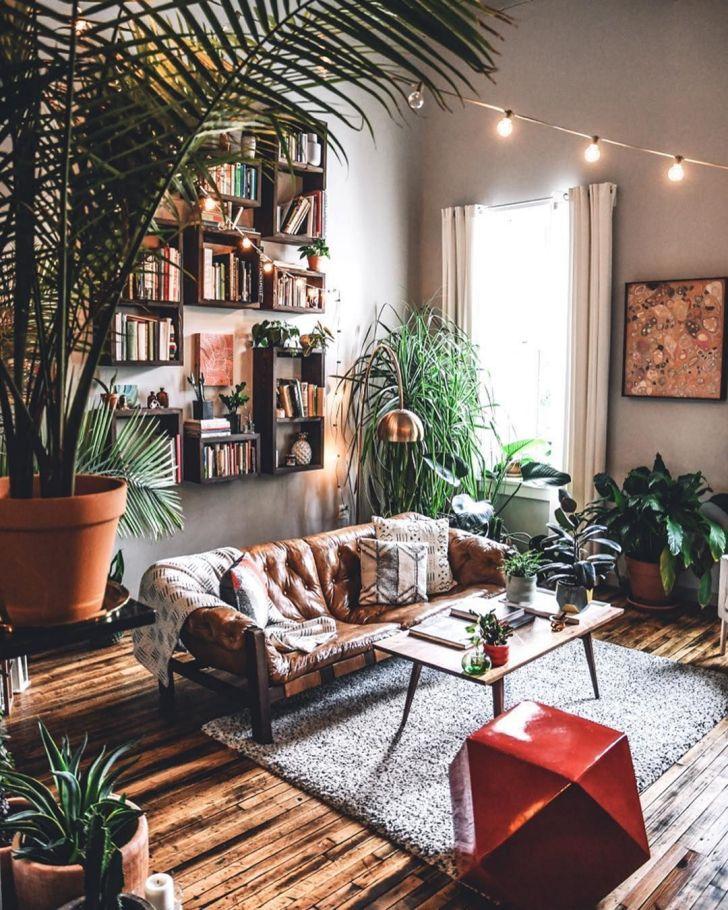 biljke za dnevnu sobu